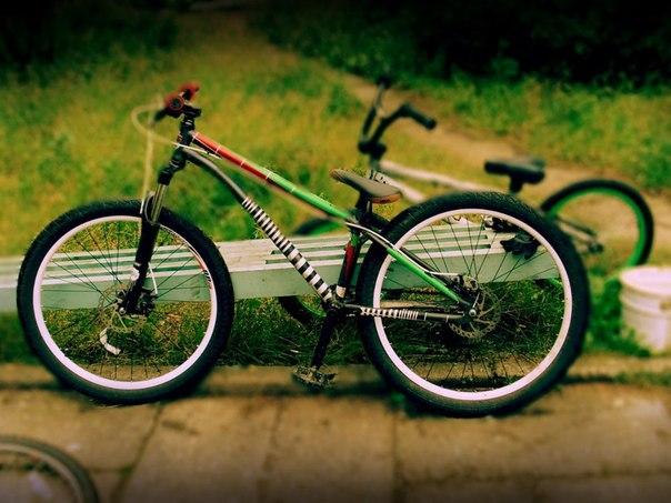 Угнали велосипед в Сосновом Бору