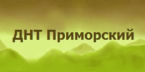 Новый сайт ДНТ Приморский