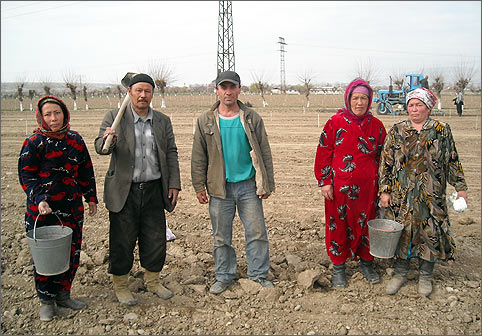 Таджикские фермеры