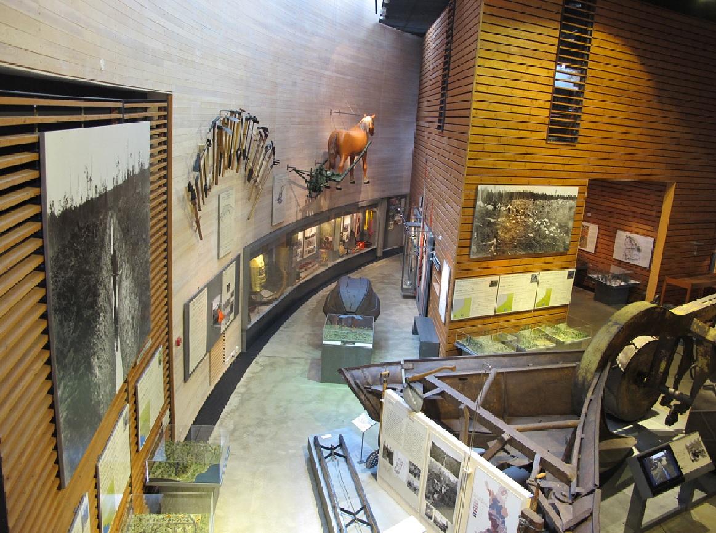 музей лусто